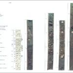 Tufoni D., 1991 Sismostratigrafia dei depositi recenti di piattaforma, tra il Fiume Tevere e Torre Valdalica (Civitavecchia)